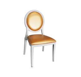Gold Dining Chair, dior chair