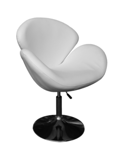 Swan chair, office chair, swivel chair